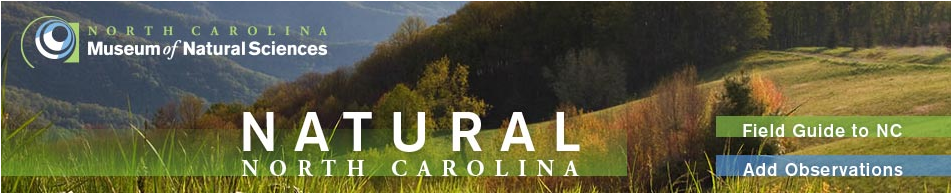 Natural North Carolina - tracking nature in our state