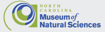 North Carolina Museum of Natural Sciences - opportunities and current projects