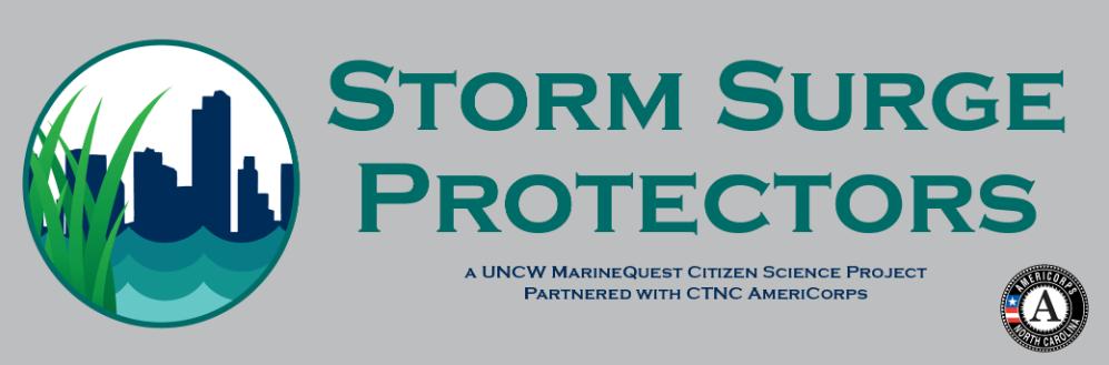 Storm Surge Protectors