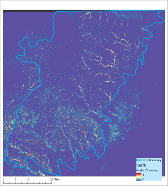Model output from MaxEnt model in the Northern Outer Piedmont (NOP) ecoregion in North Carolina