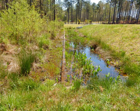 Using Natural Wetlands for Stormwater Assimilation